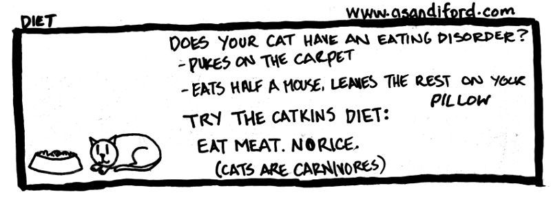 my in-laws' cat does some of these things and is also kind of fat (or maybe just fluffy)