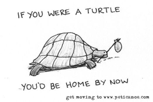 if you were a turtle your last road trip would still be happening. probably also the one before that.